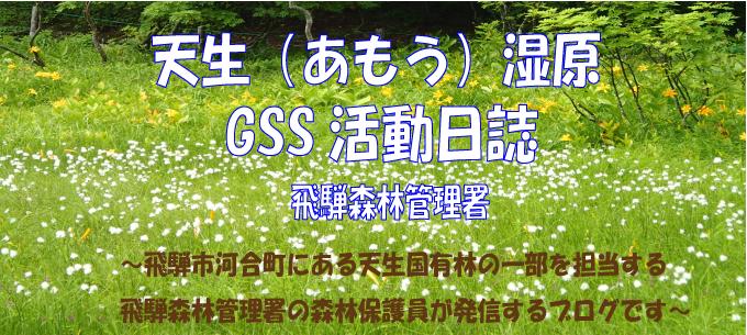 天生湿原GSS活動日誌