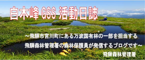 白木峰GSS活動日誌