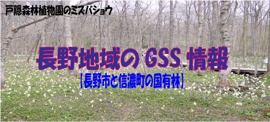 長野地域のGSS情報