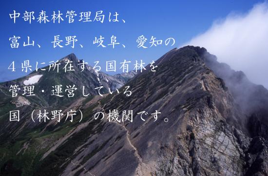 中部森林管理局は、富山、長野、岐阜、愛知の4県に所在する国有林を管理・運営している国(林野庁)の機関です。