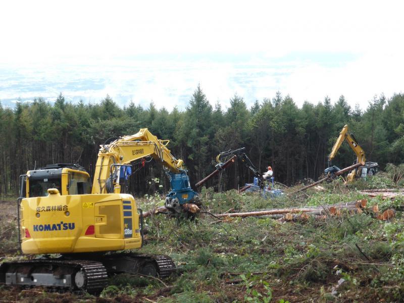 伐採・造林一貫作業システム功程調査