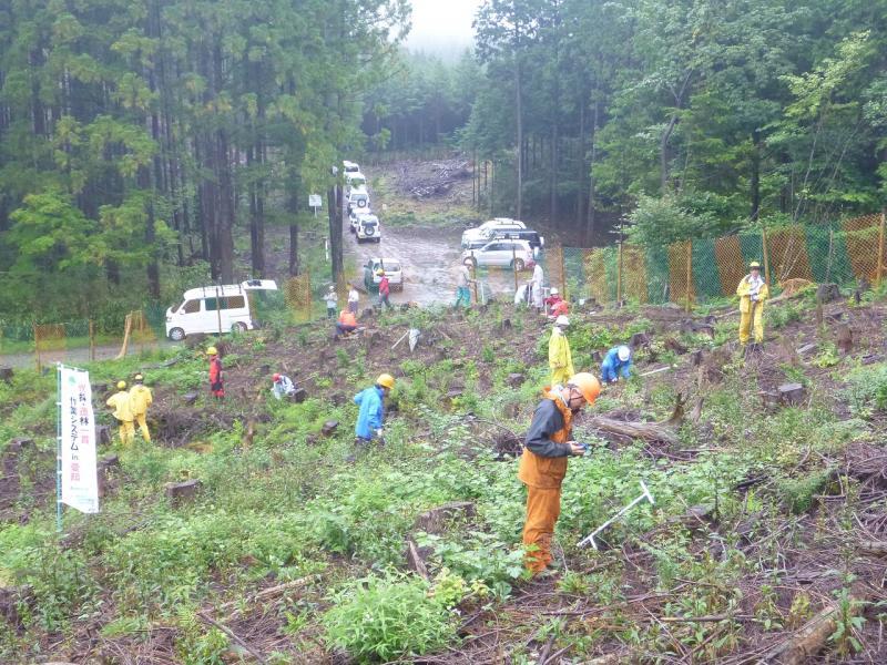 伐採・造林一貫作業システムの勉強会