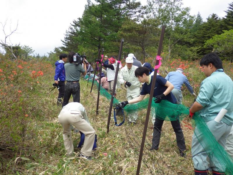 ニホンジカ防護柵設置(八島ガ原湿原)