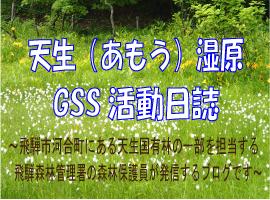 天生(あもう)湿原GSS活動日誌