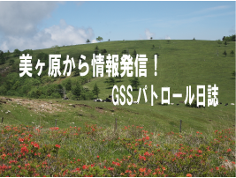 美ヶ原から情報発信!GSSパトロール日誌