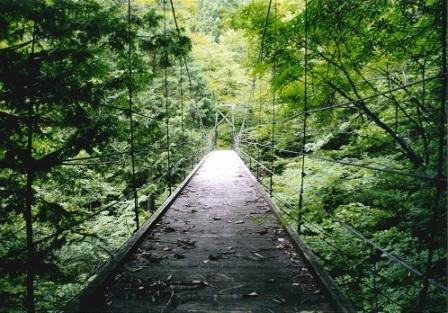静寂なとりこし橋