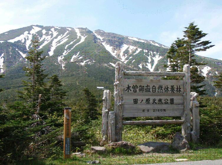 木曽御岳自然休養林