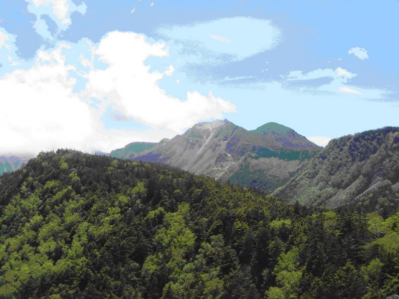 中山峠風景林