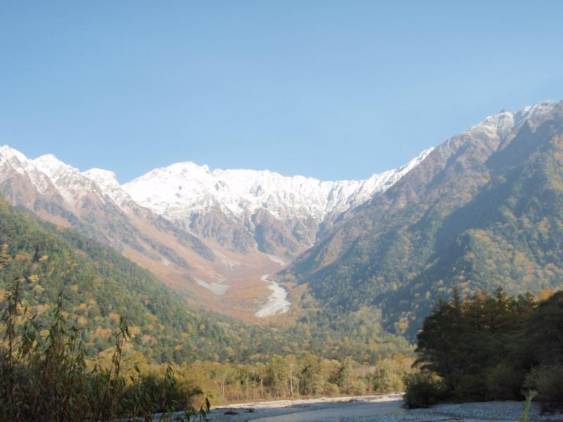 上高地自然観察教育林