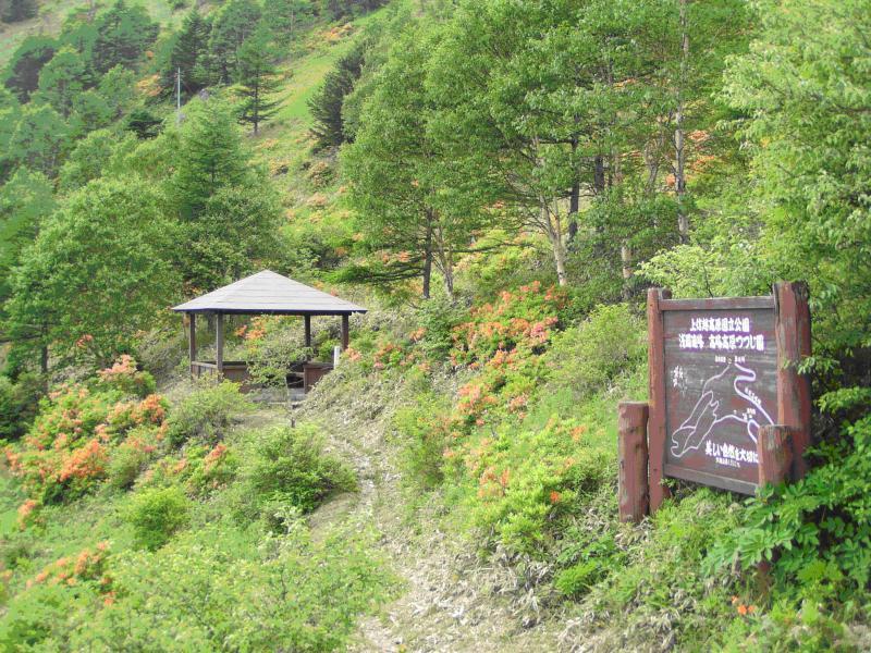 高峰ツヅジ園