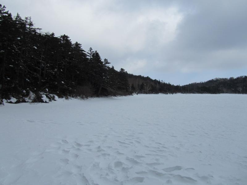 白駒の池(冬)