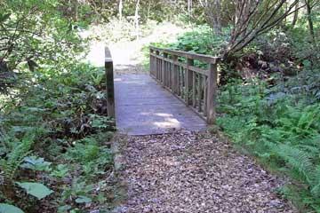 ウッドチップを敷詰めた遊歩道と木橋