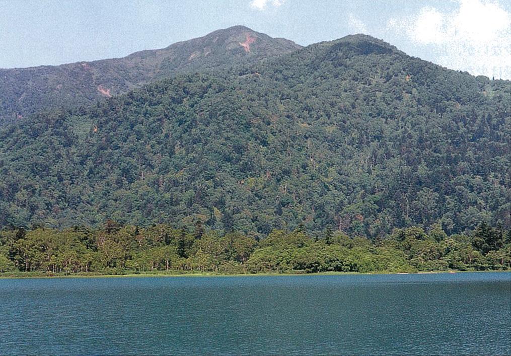 漁岳周辺森林生態系保護地域:北...