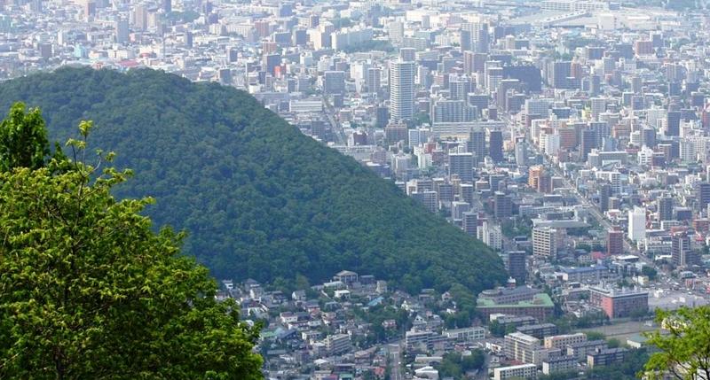 藻岩山から望む円山