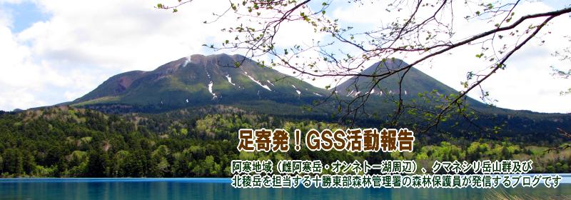 足寄発GSS活動報告ブログ