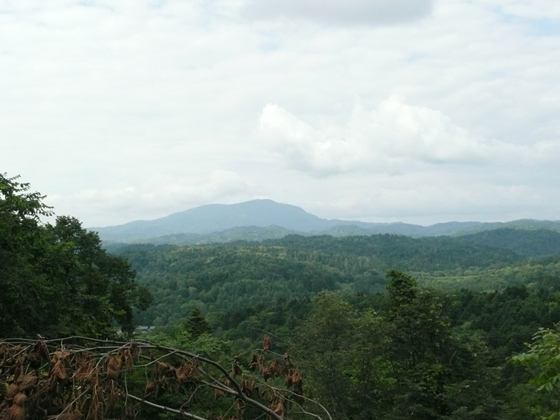 恵比須林道終点付近から翁居岳を望む