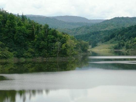 留萌ダム湖面は静かで周辺の森が映り込んでいました