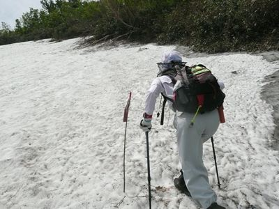 4~5合目中間位に現われる通称「熊の沢」の雪渓