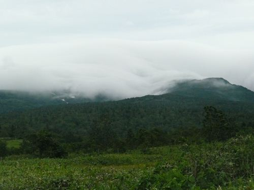 定点ポイントにて、暑寒別岳は5合目付近まで雨雲に覆われていました