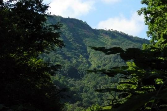 翁居岳(730m)