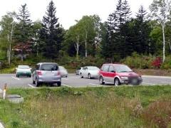 休日のおかげで、駐車場も賑わっていました。