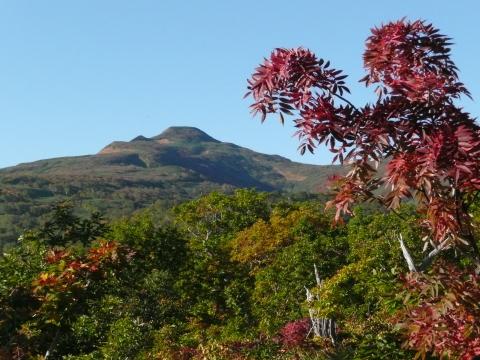 赤く色づいたナナカマド越しに、本峰が鮮やかに見えていました。