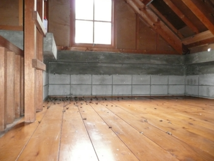 箸別小屋で、大量の蛾が死んでいましたので掃除してきました