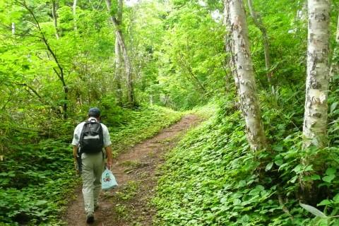 箸別ルートの特徴は、比較的なだらかなアプローチが続く登山道です。