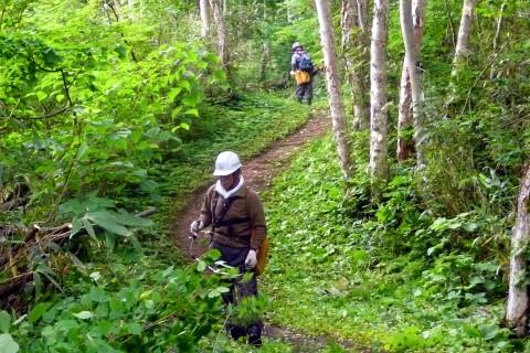 登山道1合目付近での刈り払い作業