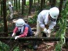 森林づくり塾間伐の様子