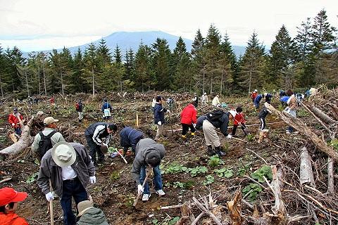 七飯町カリマ国有林市民参加の森林づくり