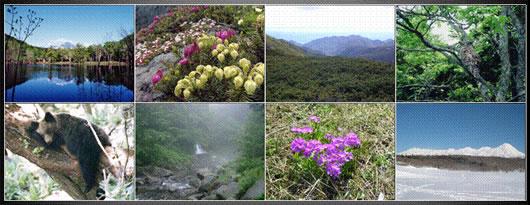 知床各地の風景写真