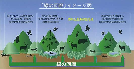 緑の回廊イメージ図