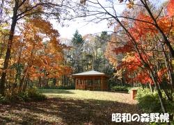 昭和の森野幌