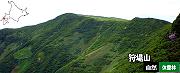 狩場山自然休養林