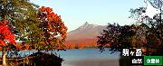 駒ヶ岳自然休養林