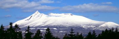 駒ヶ岳の写真