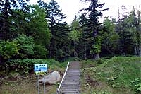 散策路入口(野営場)の写真