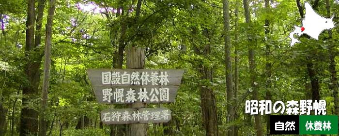 昭和の森野幌自然休養林