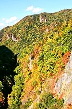 豊平峡ダム自然観察教育林の写真
