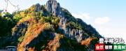 豊平峡ダム自然観察教育林