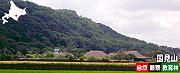 国見山自然観察教育林