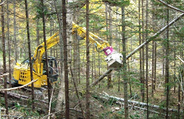 木材の安定供給TOP画