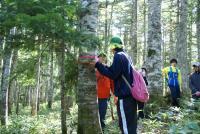 林尺体験その1