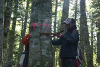 林尺体験その3