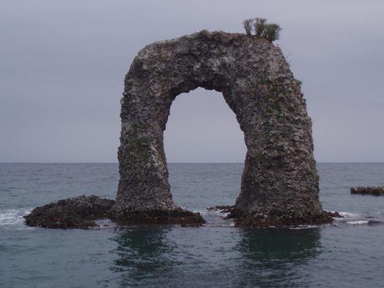 北の島便り~奥尻島・利尻島・礼文島の森林官・主任からのお便りです最新の記事へ2013年の記事2012年の記事礼文の森から