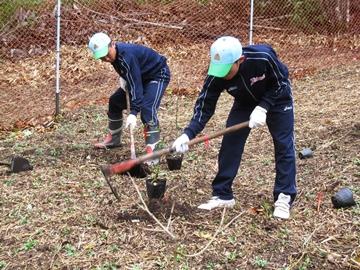 植樹作業(高校生)