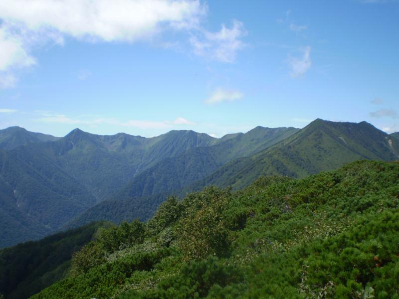 日高山脈森林生態系保護地域 日高山脈森林生態系保護地域 平成7年度に設定された日高山脈中央部森林