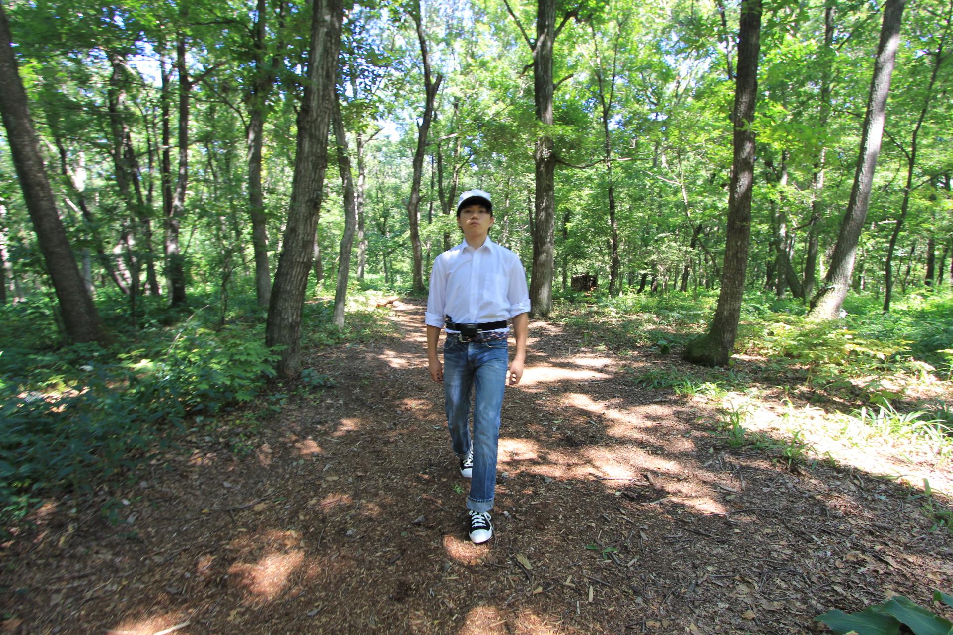 森林内歩行