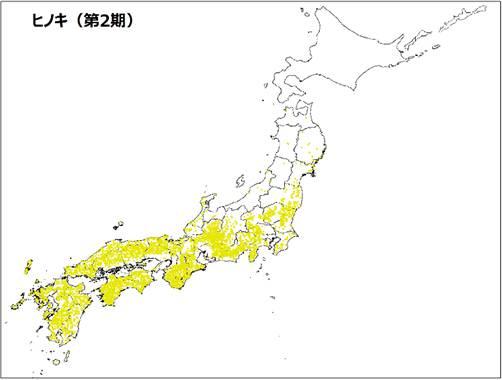 ヒノキ(第2期)